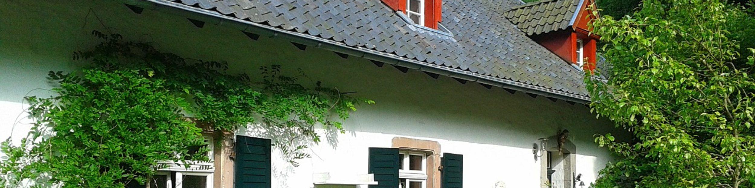 Blog Haus & Garten
